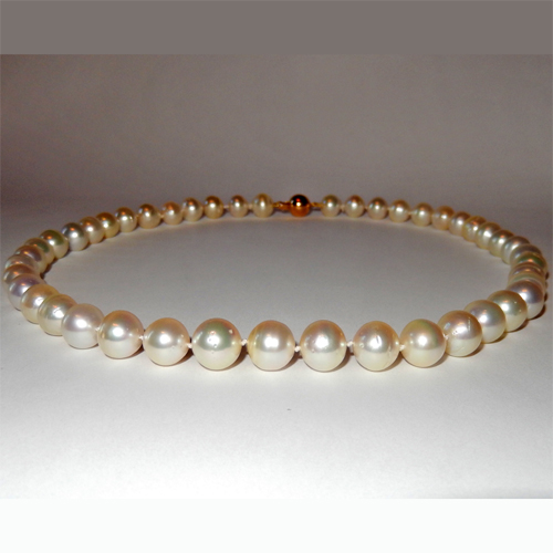 Golden South sea pearl necklace 10.00 to 11.00mm