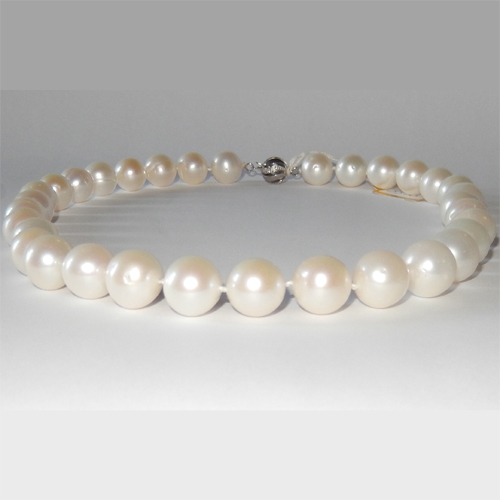 White South sea pearl necklace 11.60 to 12.50mm